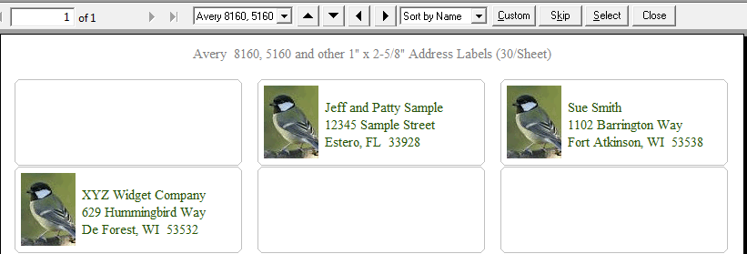 Print Labels on 8160 Avery Labels